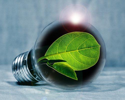 Förderung energiesparender Maßnahmen so attraktiv wie nie